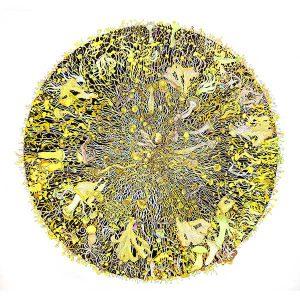 Mycelia Universe 1 (fusion)