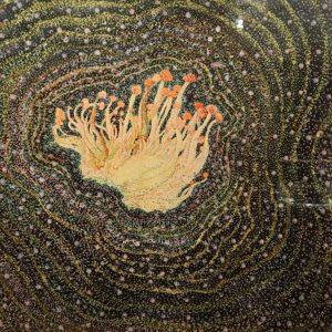Mycelium 1